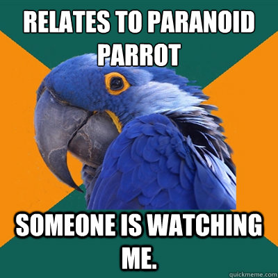Relates to Paranoid Parrot  Someone is watching me. - Relates to Paranoid Parrot  Someone is watching me.  Paranoid Parrot