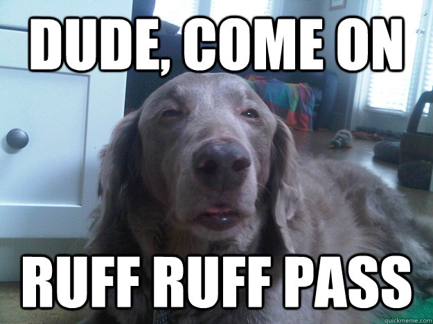 Dude, come on  RUFF RUFF PASS - Dude, come on  RUFF RUFF PASS  10 Dog