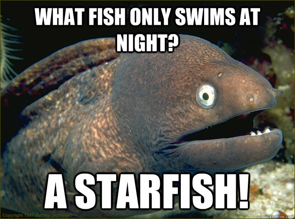 what fish only swims at night? A starfish! - what fish only swims at night? A starfish!  Bad Joke Eel