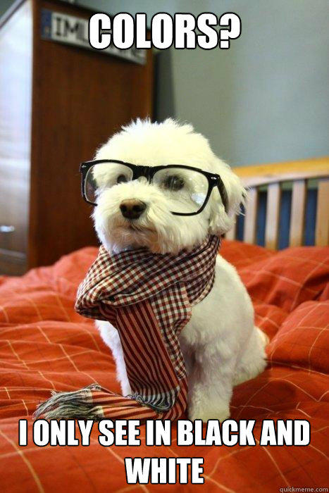 Colors? I only see in black and white  Hipster Dog