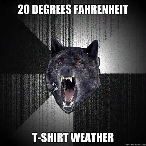 20 degrees Fahrenheit  T-shirt Weather - 20 degrees Fahrenheit  T-shirt Weather  insanitywolf