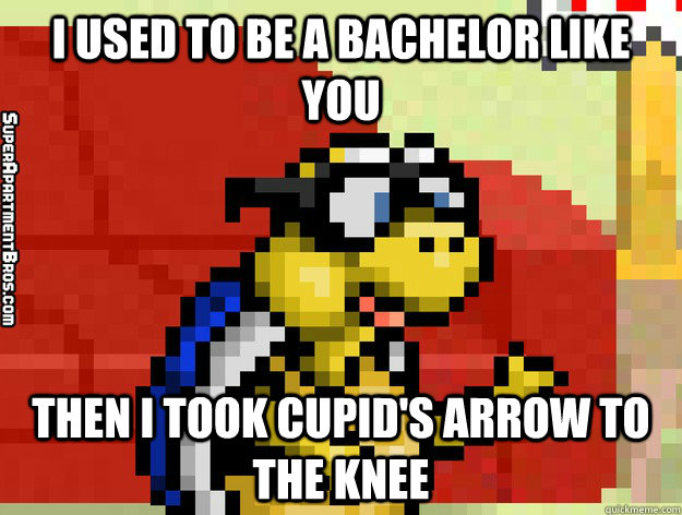 i used to be a bachelor like you then i took cupid's arrow to the knee  Video Game Valentine
