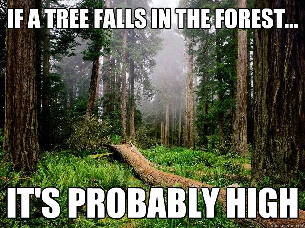 if a tree falls in the forest... It's probably high