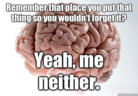 Remember that place you put that thing so you wouldn't forget it? Yeah, me neither.  - Remember that place you put that thing so you wouldn't forget it? Yeah, me neither.   Scumbag Brain