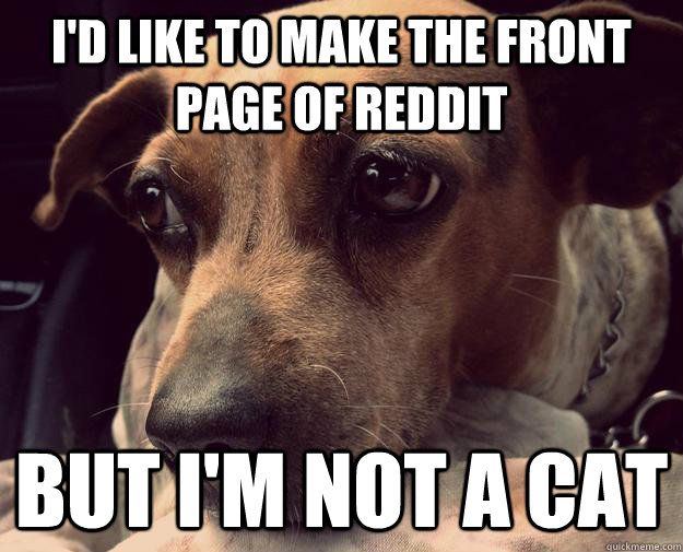 i'd like to make the front page of reddit but i'm not a cat - i'd like to make the front page of reddit but i'm not a cat  Misc