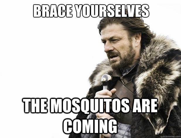 brace yourselves The Mosquitos are coming - brace yourselves The Mosquitos are coming  Misc
