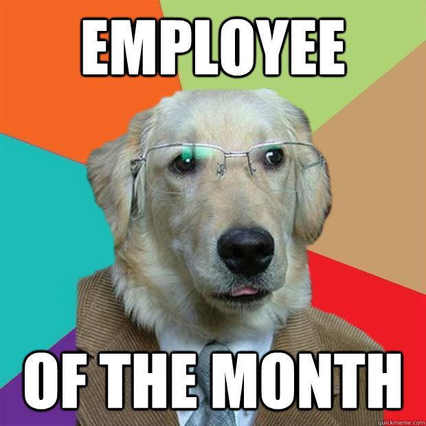 718a52df8e3e440638b6409091fb507ff727e0623d9289c75046d9b22855fc2e employee of the month business dog quickmeme