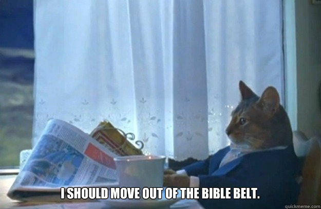 I should move out of the Bible belt. - I should move out of the Bible belt.  Sophisticated Cat