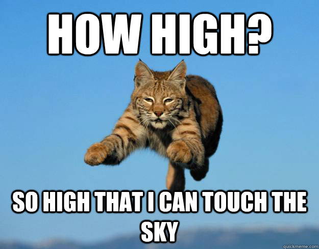 how high? so high that i can touch the sky