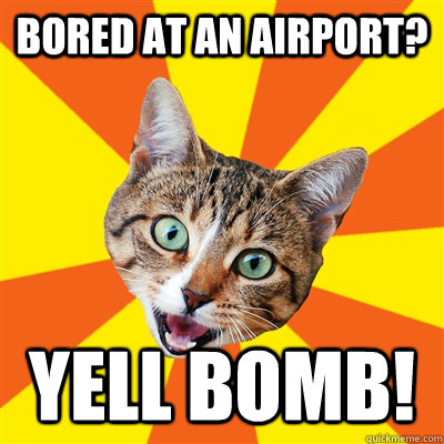 bored at an airport? yell Bomb! - bored at an airport? yell Bomb!  Bad Advice Cat