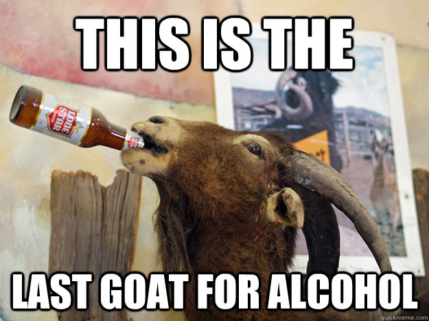THIS IS THE LAST GOAT FOR ALCOHOL  goat