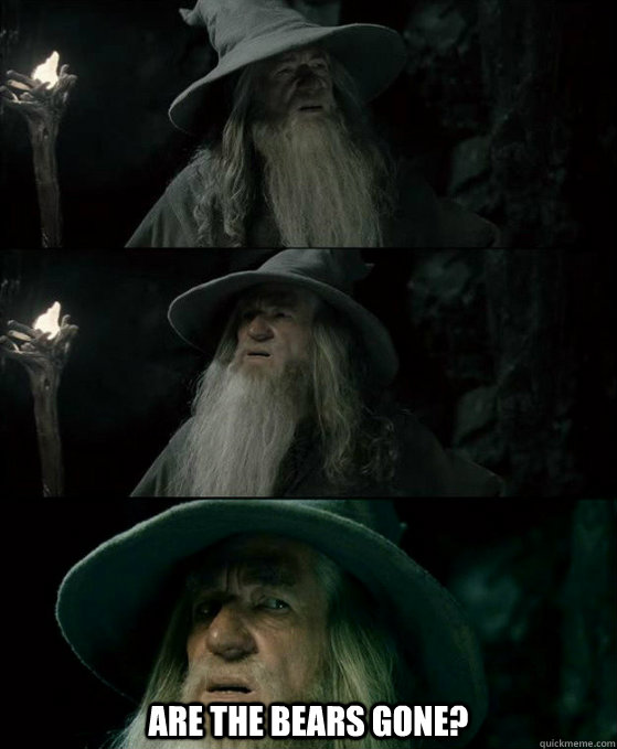 Are the bears gone? -  Are the bears gone?  Confused Gandalf