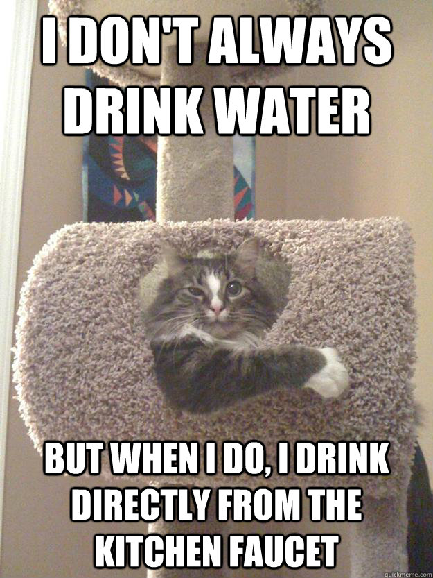 Funny Meme About Drinking Water : I don t always drink water but when do directly
