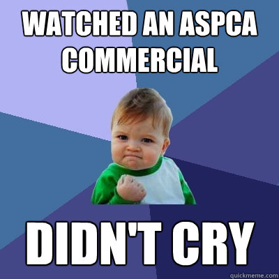 Watched an ASPCA Commercial Didn't cry - Watched an ASPCA Commercial Didn't cry  Success Kid