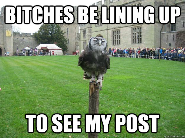 Bitches be lining up To see my post  Pompous Owl