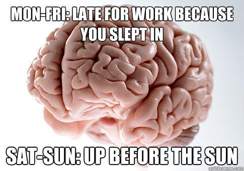 mon-fri: late for work because you slept in sat-sun: up before the sun - mon-fri: late for work because you slept in sat-sun: up before the sun  Scumbag Brain