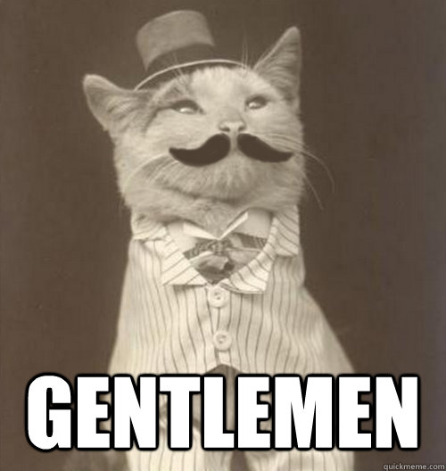 gentlemen   original business cat   quickmeme