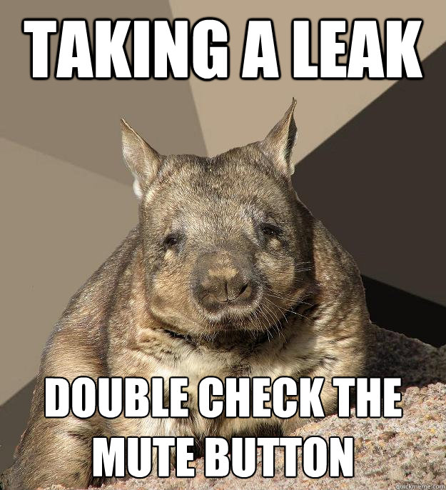 Taking a leak double check the mute button  Work From Home Wombat