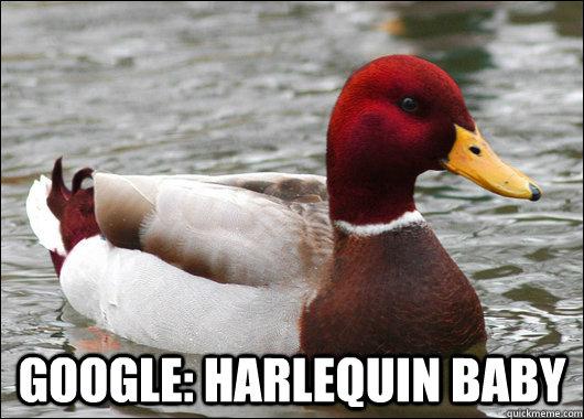 google: harlequin baby -  google: harlequin baby  Malicious Advice Mallard