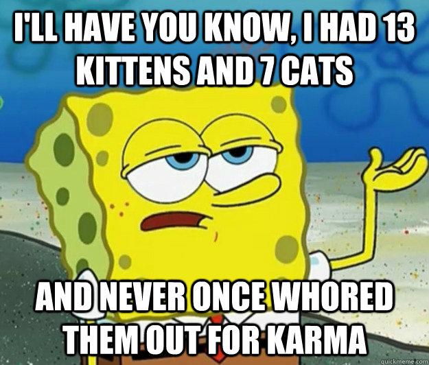 I'll have you know, I had 13 kittens and 7 cats And never once whored them out for karma - I'll have you know, I had 13 kittens and 7 cats And never once whored them out for karma  Tough Spongebob
