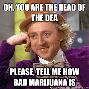 Oh, you are the head of the dea  Please, tell me how bad Marijuana is - Oh, you are the head of the dea  Please, tell me how bad Marijuana is  Condescending Wonka