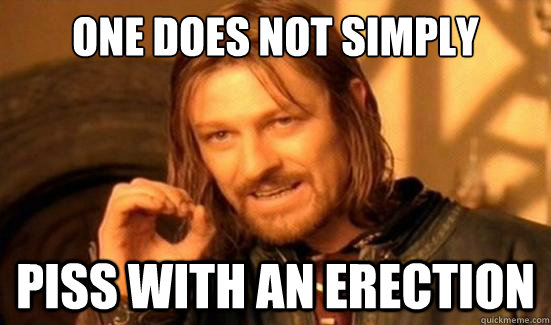 One Does Not Simply piss with an erection - One Does Not Simply piss with an erection  Boromir