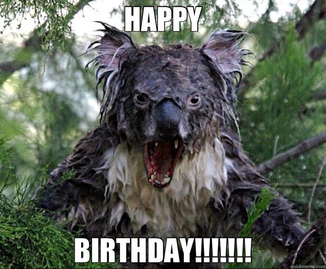 HAPPY BIRTHDAY!!!!!!! - HAPPY BIRTHDAY!!!!!!!  Wet Koala