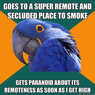 Goes to a super remote and secluded place to smoke gets paranoid about its remoteness as soon as i get high  - Goes to a super remote and secluded place to smoke gets paranoid about its remoteness as soon as i get high   Paranoid Parrot