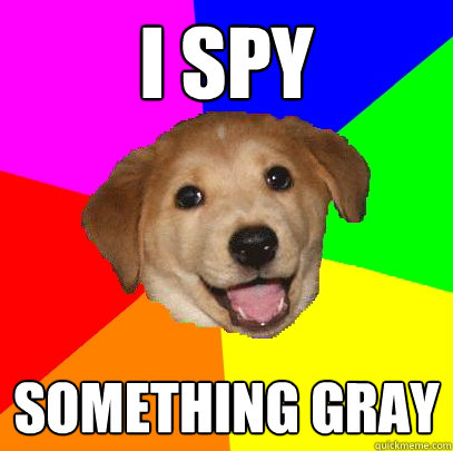 I spy something gray - I spy something gray  Advice Dog