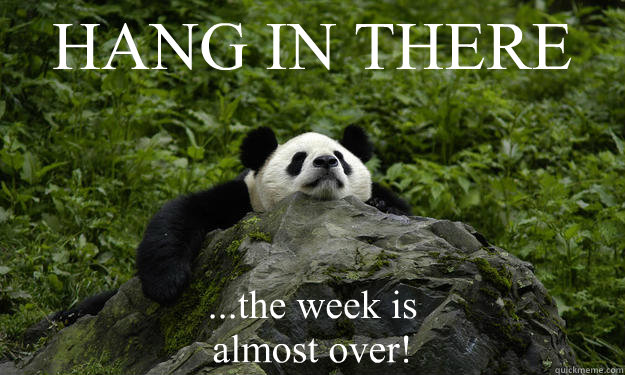 HANG IN THERE ...the week is  almost over!