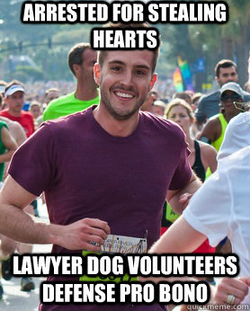 Arrested for stealing hearts lawyer dog volunteers defense pro bono - Arrested for stealing hearts lawyer dog volunteers defense pro bono  Ridiculously photogenic guy