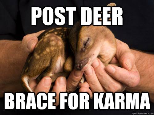 Post deer brace for karma - Post deer brace for karma  baby deer