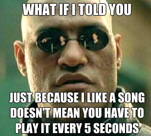 What if i told you just because I like a song doesn't mean you have to play it every 5 seconds