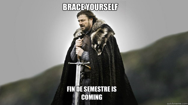Brace Yourself Fin de semestre IS COMING - Brace Yourself Fin de semestre IS COMING  Ned stark winter is coming