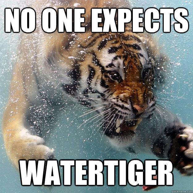 NO ONE EXPECTS WATERTIGER