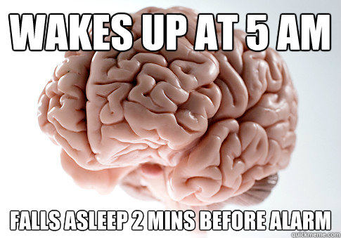 wakes up at 5 am falls asleep 2 mins before alarm - wakes up at 5 am falls asleep 2 mins before alarm  Scumbag Brain