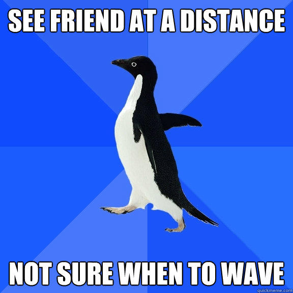 See friend at a distance not sure when to wave - See friend at a distance not sure when to wave  Socially Awkward Penguin
