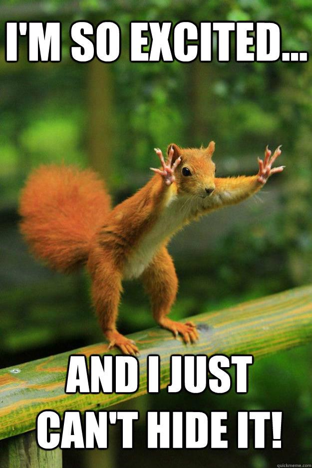 I M So Excited Funny Meme : Red squirrel memes quickmeme
