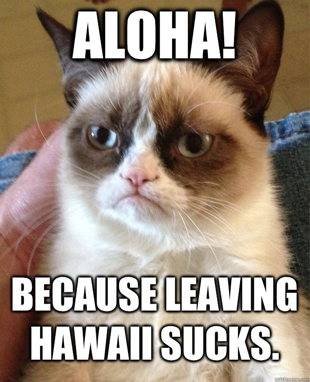 72fc222d1512892204265c866e9e7f48ed086a31d694ae08c194d7ac8352c8cb aloha! because leaving hawaii sucks grumpy cat quickmeme