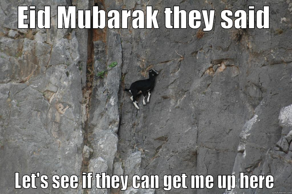 Qurbani Goat - EID MUBARAK THEY SAID LET'S SEE IF THEY CAN GET ME UP HERE Misc
