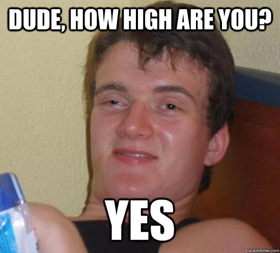 dude, how high are you? yes