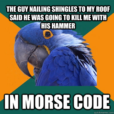 The guy nailing shingles to my roof said he was going to kill me with his hammer In Morse Code - The guy nailing shingles to my roof said he was going to kill me with his hammer In Morse Code  Paranoid Parrot
