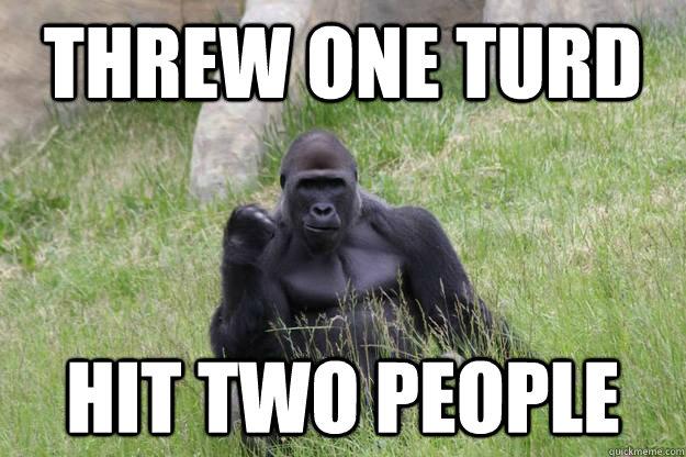 Threw one turd Hit two people  Success Gorilla