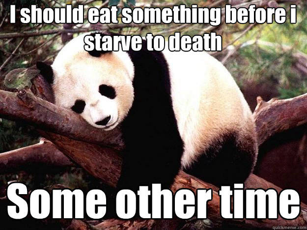 I should eat something before i starve to death Some other time  Procrastination Panda