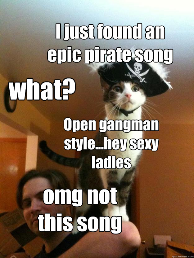 I just found an epic pirate song what? Open gangman style...hey sexy ladies omg not this song