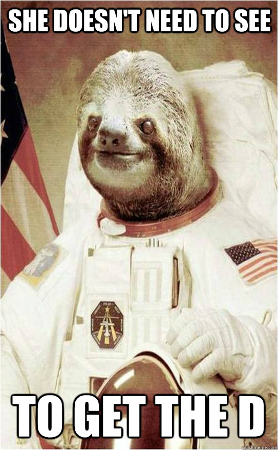 She doesn't need to see To get the D  Astronaut Rape Sloth