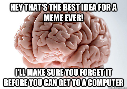 Hey that's the best idea for a meme ever! I'll make sure you forget it before you can get to a computer - Hey that's the best idea for a meme ever! I'll make sure you forget it before you can get to a computer  Scumbag Brain