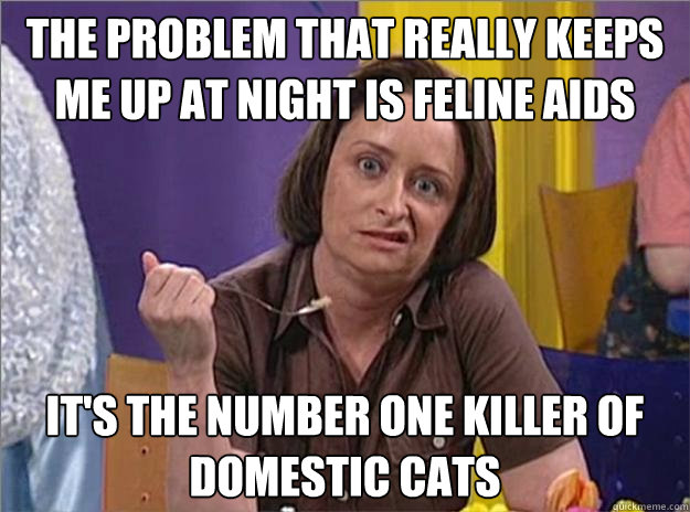 The problem that really keeps me up at night is feline AIDS It's the number one killer of domestic cats