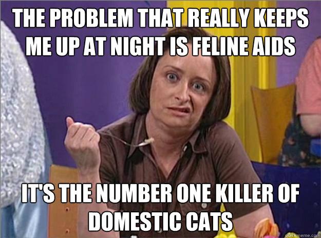 Debbie downer meme feline aids