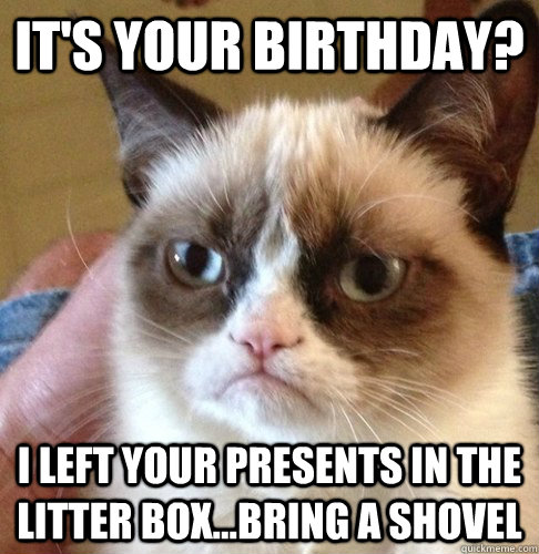 It's your birthday? I left your presents in the litter box...bring a shovel  Happy Birthday Angry Cat